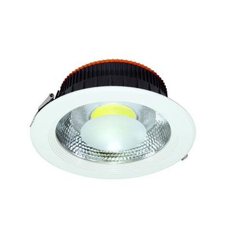 LED DOWN LIGHT-30W